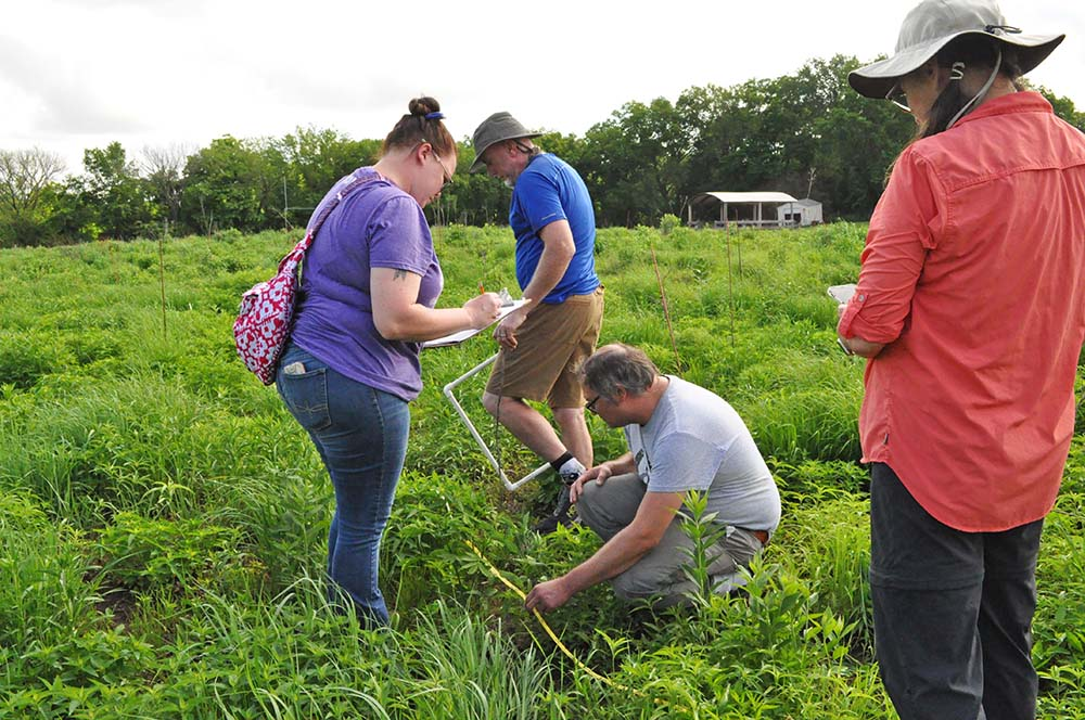 Summer Institute participants carry out an exercise using standard field research methods for plant species sampling at Free State Prairie.