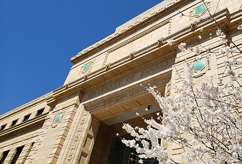 A blooming tree graces the main entrance of Strong Hall in early spring.